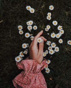 Bir gelsen, Ölümlü düşlerimden alsan beni.  Cahit Külebi Hand Photography, Aesthetic Photography Nature, Tumblr Photography, Creative Photography, Beautiful Bouquet Of Flowers, Beautiful Flowers Wallpapers, Flowers Nature, Flower Aesthetic, Aesthetic Images