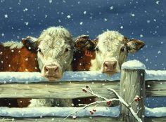 'Two Snowy Herefords' - Linda Picken Art Studio