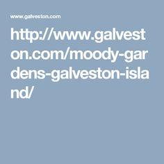 http://www.galveston.com/moody-gardens-galveston-island/