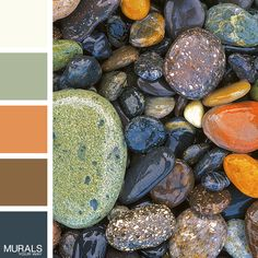 Stones at Lopez Island Wall Mural with Color Palette
