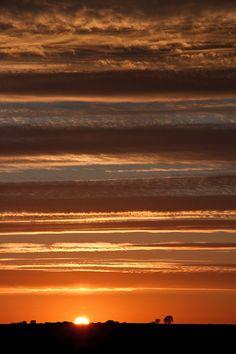orange -stripped sky