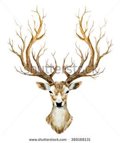 watercolor illustration isolated deer, big antlers, mountain tree branch - stock photo