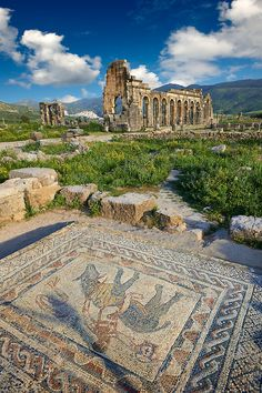 Roman mosaic in the House of the Athlete or Desultor, located near the forum, contains a humorous mosaic of an athlete or acrobat riding a donkey back to front while holding a cup in his outstretched hand. It may possibly represent Silenus also known as the wine God Dionysus or Bacchus. Looking towards the Basilica. Volubilis Archaeological Site, near Meknes, Morocco
