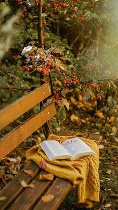 Attractive garnish of radish and carrot rose flower Fall Season Pictures, Fall Pictures, Autumn Tale, Autumn Scenes, Autumn Photography, Jolie Photo, Autumn Garden, Hello Autumn, Photo Backgrounds