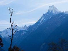 Mt. Fishtail, Nepal