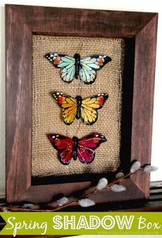 Spring Butterfly Shadow Box