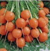 Paris Market carrots. These would be great roasted whole!
