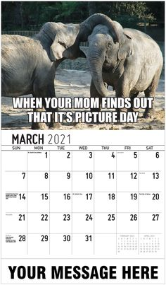 2021 Meme Humor Wall Calendars low as Advertise your Business, Organization or Event all year. Calendar App, Us Holidays, Post Ad, Advertise Your Business, Free Advertising, Picture Day, Daily Activities, Upcoming Events, Digital Marketing