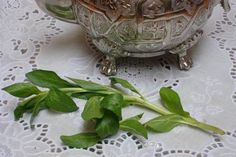 Moroccan Tea  with Fliou - Green Tea with Pennyroyal (Menthe Pouliot): Moroccan Tea with Fliou