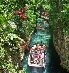 In Xcaret Park you will find the best attractions and activities in Cancun and Riviera Maya, Mexico. Enjoy with your family natural and cultural attractions on the Caribbean Sea in Xcaret, Mexico.
