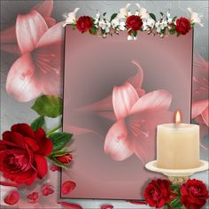Picture Frames - 2015 May - Red Rose Petals picture Frames Red Rose Petals, Red Roses, Foto Frame, Angel Pictures, Heart Pictures, Frame Background, Background Images, Good Night Gif, Digital Photo Frame