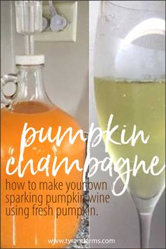 If you have sweet-flavored pumpkins, you can make your own pumpkin champagne or sparkling wine. Heres a time-tested recipe our friends shared using their own Williamson pumpkins (a family heirloom). Champagne Recipe, Champagne Bottles, Wine Recipes, Homebrew Recipes, Alcohol Recipes, Veg Recipes, Pumpkin Wine, Fermentation Recipes, Time Tested