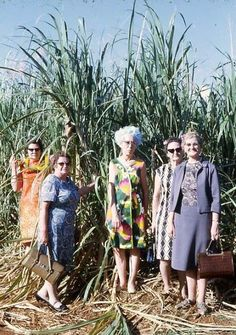 Grandmothers of the Corn.   ~.~ 16 Awkwardly Funny Family Photos