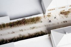 Living Pavement to transform the city into a softer and more natural environment