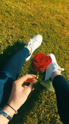 The seen as garden with red rose Instagram Dp, Profile Pictures Instagram, Instagram And Snapchat, Instagram Story Ideas, Creative Instagram Stories, Profile Picture Ideas, Nature Instagram, Teenage Girl Photography, Tumblr Photography