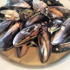 Day #146 - summer dinner of juicy mussels in a cream and cider sauce