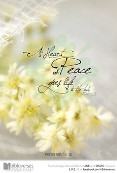 beliefpics:  A heart at peace gives life to the body, but envy rots the bones.-Proverbs 13:30…http://ibibleverses.christianpost.com/?p=10448...