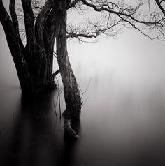 by the river http://ibortolotti.tumblr.com/post/1623732441