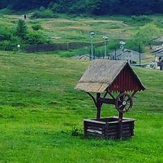 #Summer. #green #Figa #Transilvania #Romania