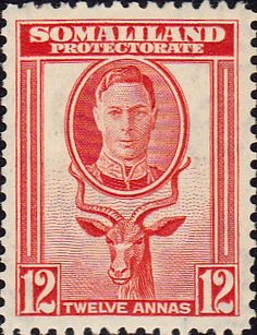 Somaliland Protectorate 1951 King George VI Decimal Surcharged SG 129 Scott 120 Fine Used Other Somaliland Stamps HERE German East Africa, Horn Of Africa, British Indian Ocean Territory, Buy Stamps, Somali, King George, Commonwealth, Stamp Collecting, Postage Stamps