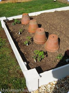 How to build raised planter beds