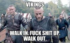 Vikings. What to expect