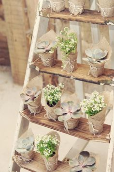 creative rustic wedding ideas to wedding favors on wood ladder