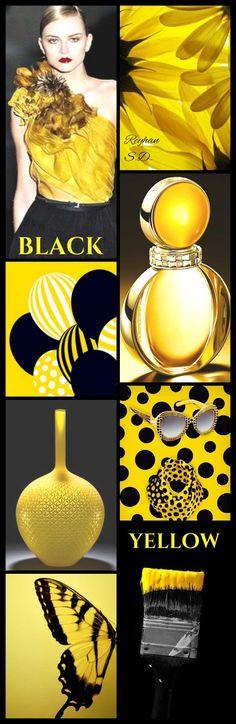 '' Black & Yellow '' by Reyhan S.D.