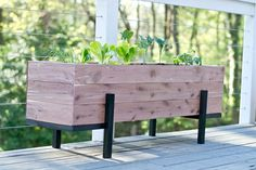 How to build a cedar planter and grow your own salad garden. With a few simple materials and tools - you can quickly have your own custom planter.