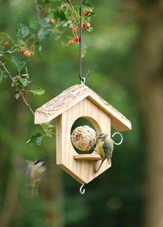 Apple/suet bird feeder