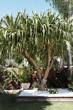 Shaded by a pandanus - kids sandpit - beach life - children play spaces - Byron Bay beach house - via Homelife