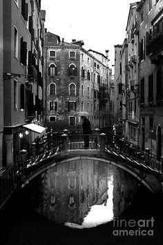 Venice, Radu Buema