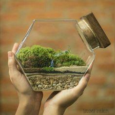 Bonsai Terrarium For Landscaping Miniature Inside The Jars 6