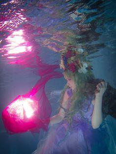 ゆうさん 水中写真 Underwater