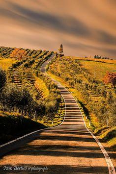 Tuscany Siena Italy