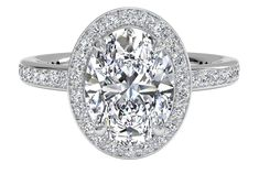 Halo Micropavé Diamond Band Engagement Ring - in Platinum - (0.28 CTW)