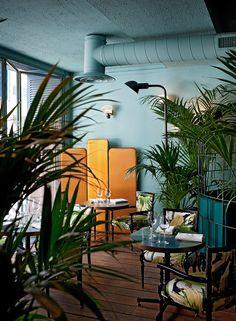 Blue walls and foliage