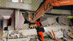 earth quake search and rescue German Shepherd Dogs, German Shepherds, Search And Rescue Dogs, Earth Quake, Shepherd Dogs