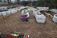Loughborough Farm in London; growing food in large builders' bags as the site may be contaminated (due to previous industrial use) and they only have temporary permission to use the site. The project aims to locate derelict pieces of land. Farms In London, Permaculture, Horticulture, Organic Gardening, Industrial, Community, Board, Outdoor Decor, Projects