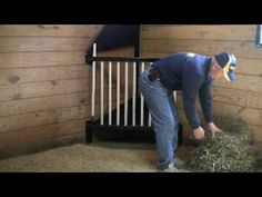 Almost perfect stall hay feeder! Place at ground level. turn lid into grain feeder (with nubbins or holes to slow grain consumption) and add clip for keeping closed. solid grill front. keep angle floor. add hay loading hole in aisle wall and grain hole above that.