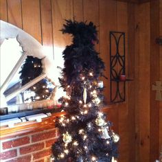 What can I say about a black tree?