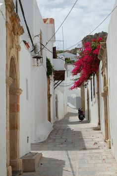 Rhodes - Back street of Lindos where my mother's parents were born!