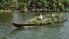 Peaceful canal life in the backwaters of Kerala, India