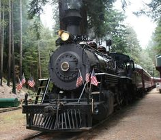 Skunk Train  Willits to Fort Bragg Northern California USA. My grandpa ran this train for a couple years after he retired from SP.