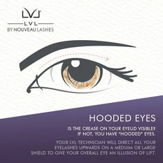 017f1bb34b1 Eyelashes · Hooded Eyes - Is the crease on your eyelid visible? If not, you  have