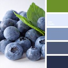 Shades of blueberry blue are appropriate in redecoration of bathrooms and bedrooms. By using this palette in different proportions you can create bold and.