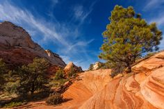 Photograph East Zion by James Marvin Phelps on 500px