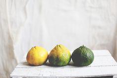 Rad Fruits: The Uniq Fruit | Free People Blog
