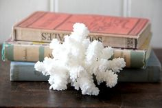Small Vintage Natural White Sea Coral by tentvintage on Etsy