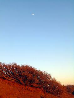 montaña amarilla, costa-del-silencio #tenerife